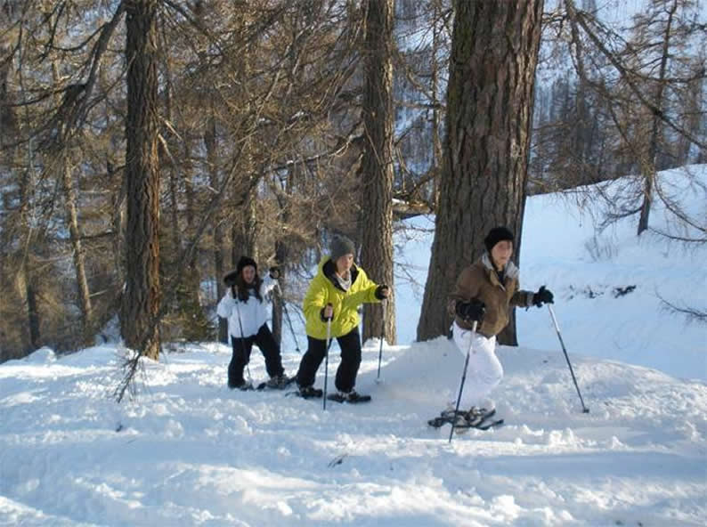 Image 7 - Discover what Bosco Gurin has to offer outside of the slopes in winter!