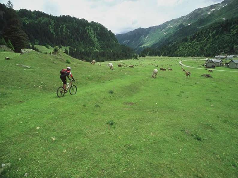 Image 1 - Alpi Bedretto Bike - Airolo (Pesciüm) - Airolo