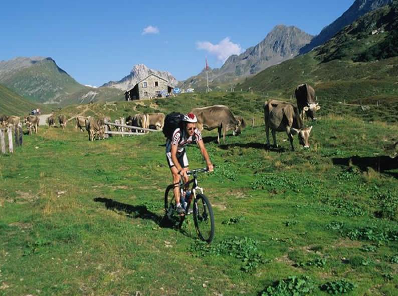 Image 2 - Alpi Bedretto Bike - Airolo (Pesciüm) - Airolo