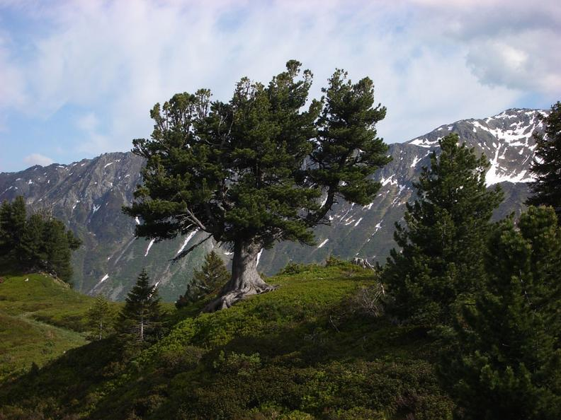 Image 0 - Projets - Parcs Nationaux