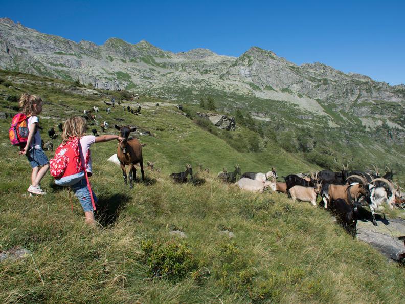 Image 3 - Projets - Parcs Nationaux
