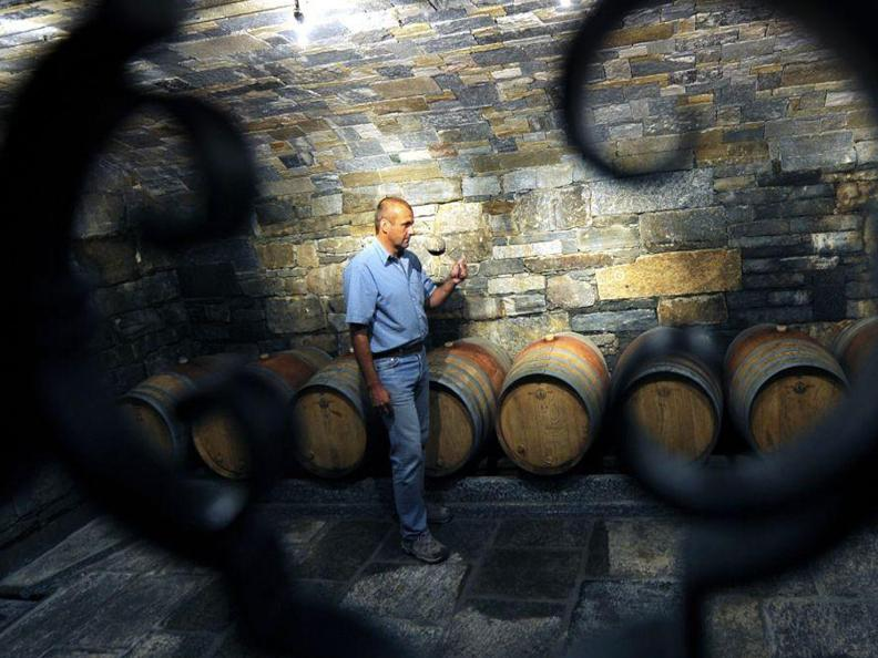 Image 2 - Wine cellar Carrara