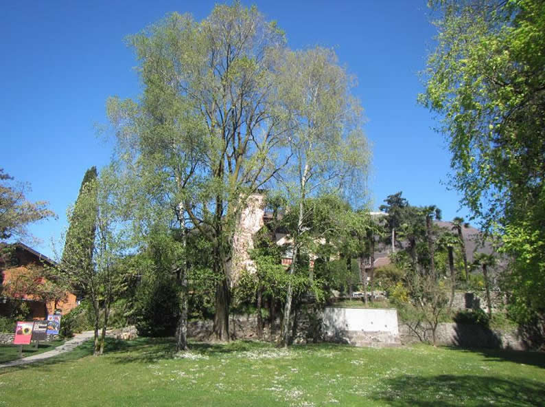 Image 3 - Museo Castello San Materno Ascona