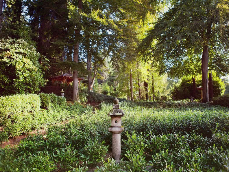 Image 6 - Park Monte Verità