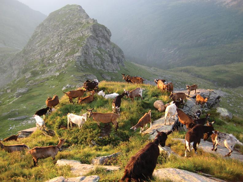 Image 6 - Trekking tra valli e villaggi