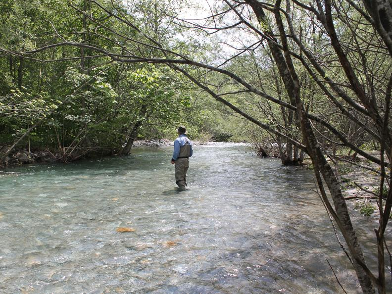 Image 1 - Guided fishing trip: Maggia – Verzasca