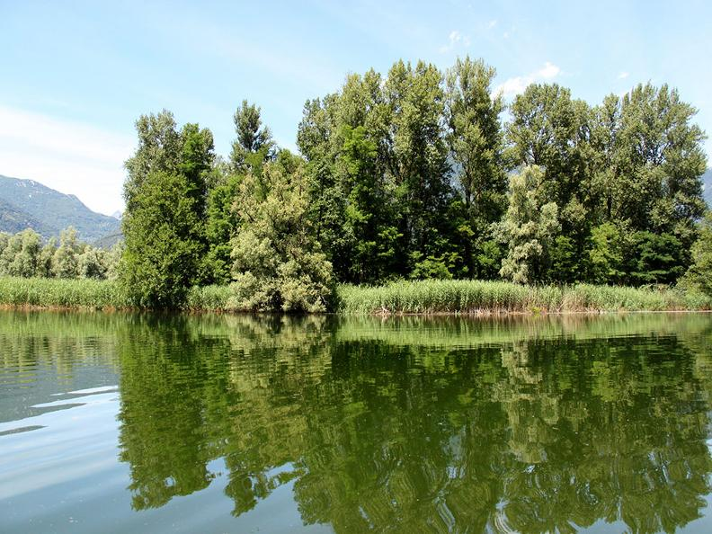 Image 3 - Excursion en bateau des Bolle di Magadino