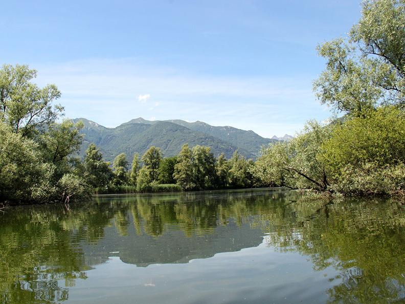 Image 5 - Excursion en bateau des Bolle di Magadino