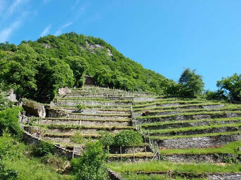 Image 0 - Linescio: village of terraces