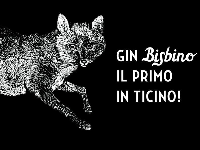 Image 3 - Gin Bisbino - Der erste im Tessin!