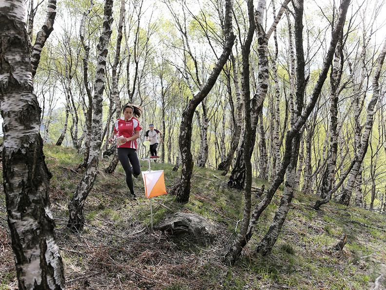 Image 1 - Orienteering Course – fixed trails in Capriasca