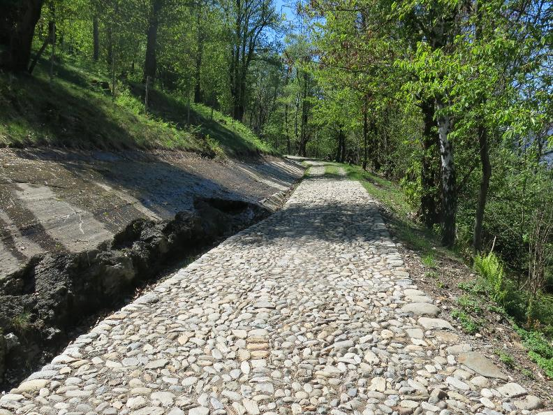 Image 0 - The historical Montecenerino trail