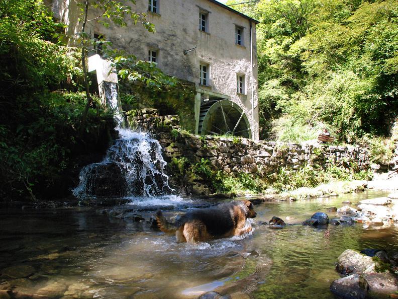 Image 1 - Il Mulino di Bruzella