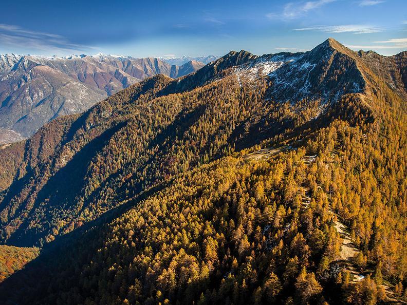 Image 1 - Waldreservat Valle di Lodano