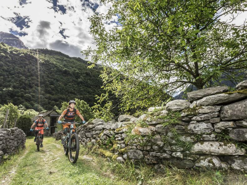 Image 1 - Mountain Bike Offer - Hotel Belvedere Locarno