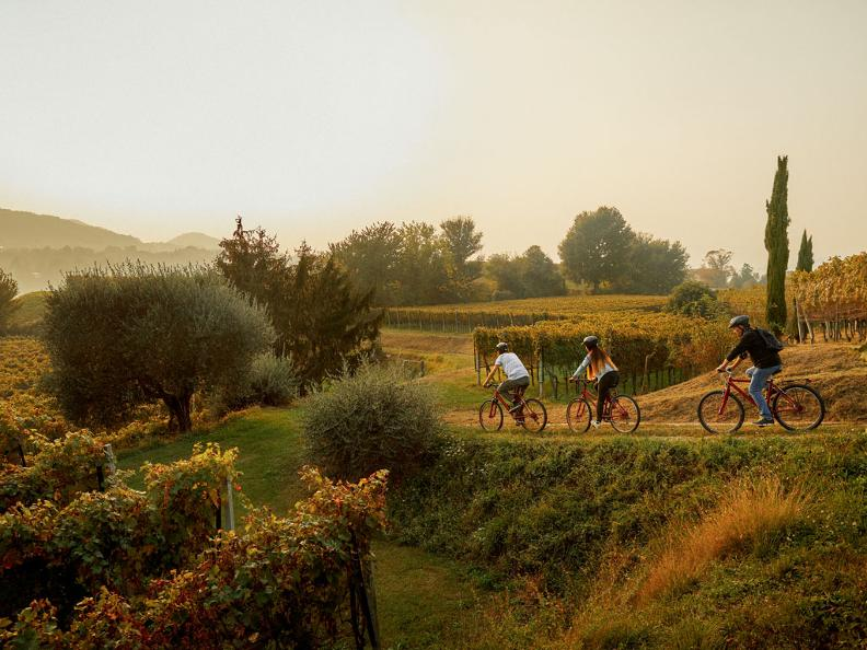 Image 0 - Bike'n'Wine