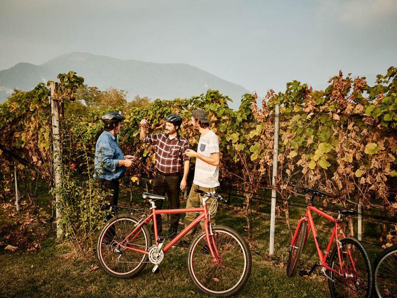 Image 3 - Bike'n'Wine