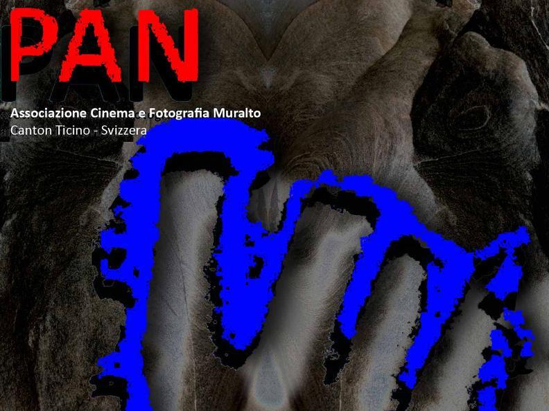 Image 0 - PAN Cinema and Photography Association Muralto