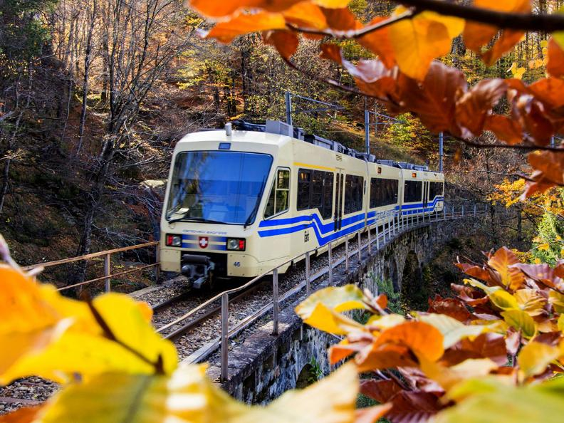 Image 0 - The foliage-train