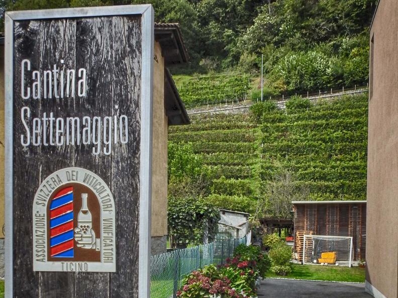 Image 0 - Cave vinicole Settemaggio