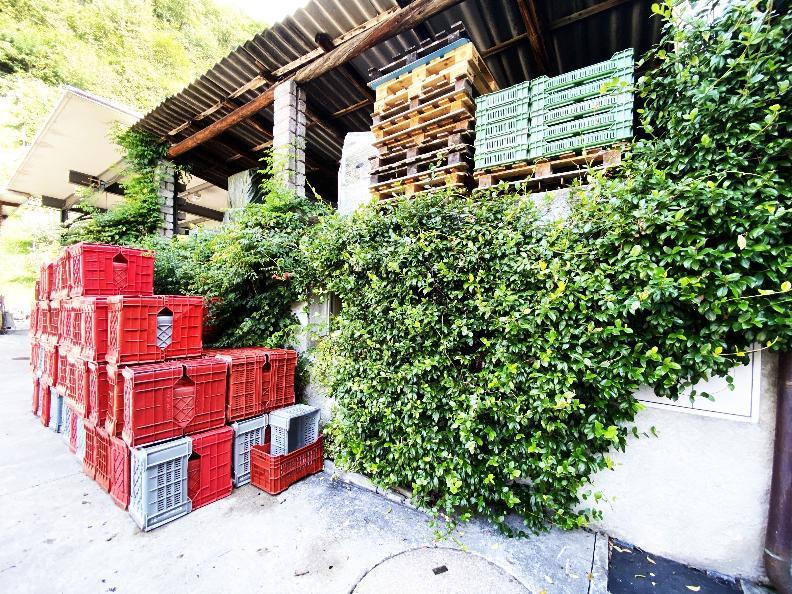 Image 7 - Wine cellar Settemaggio