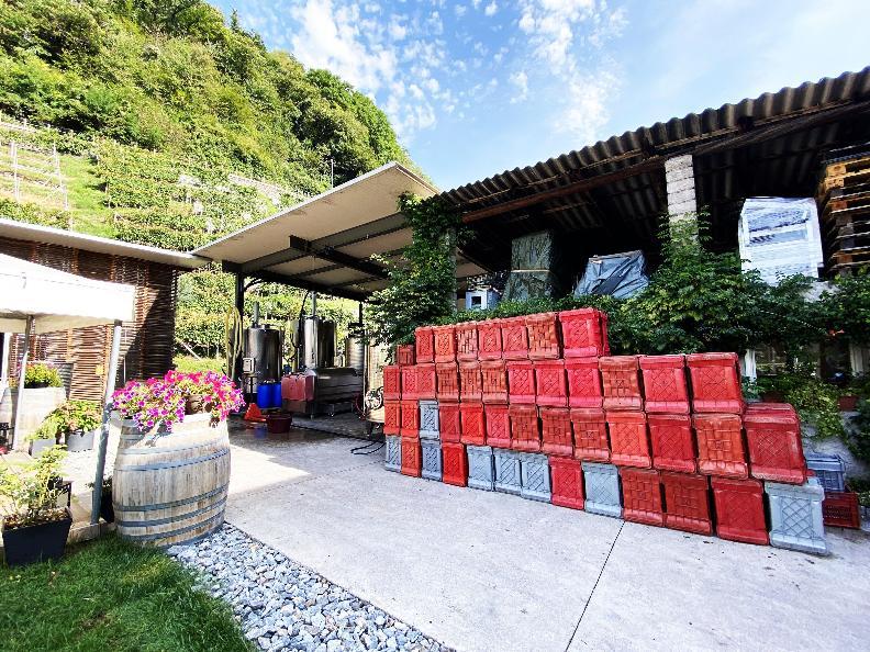 Image 9 - Wine cellar Settemaggio