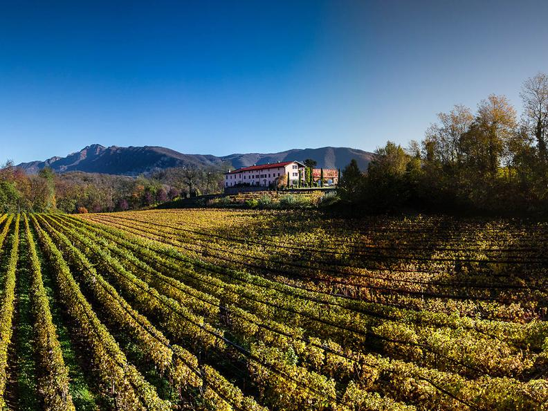 Image 0 - Wine and Gourmet Tour