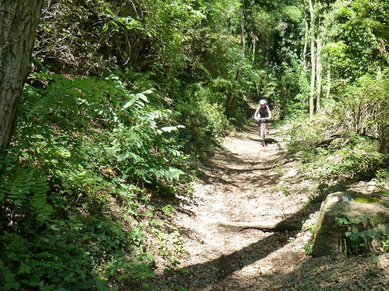 Image 3 - Mountain Bike Offer - Hotel Serpiano