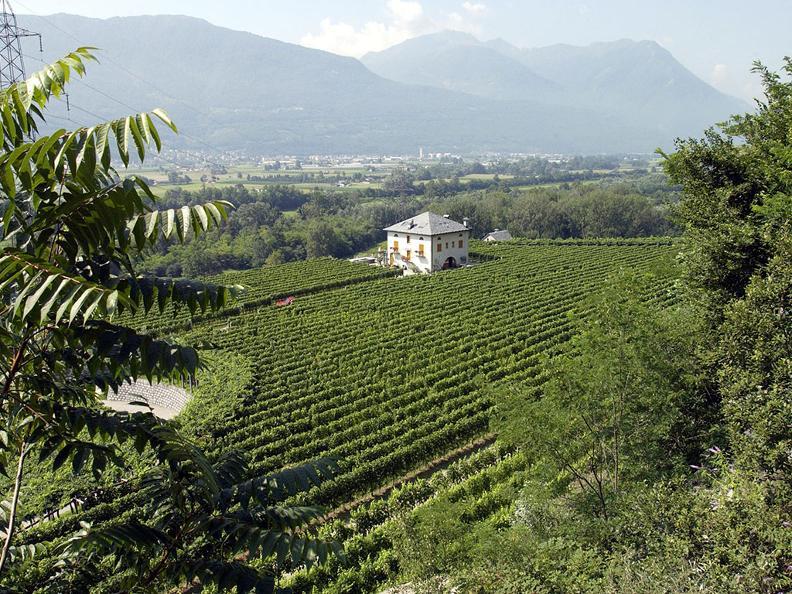 Image 0 - Sleeping in the Ticino vineyards