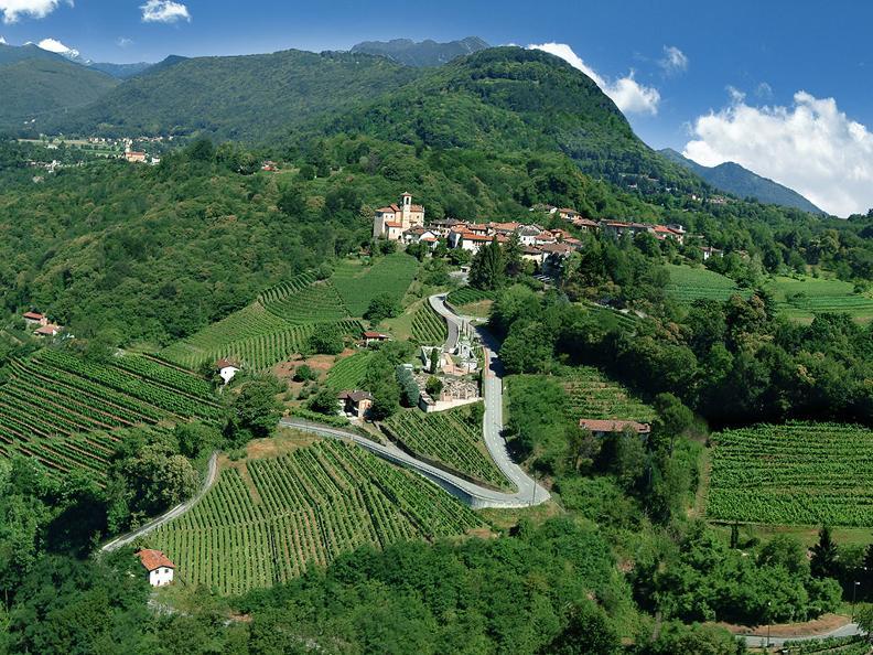 Image 2 - Sleeping in the Ticino vineyards