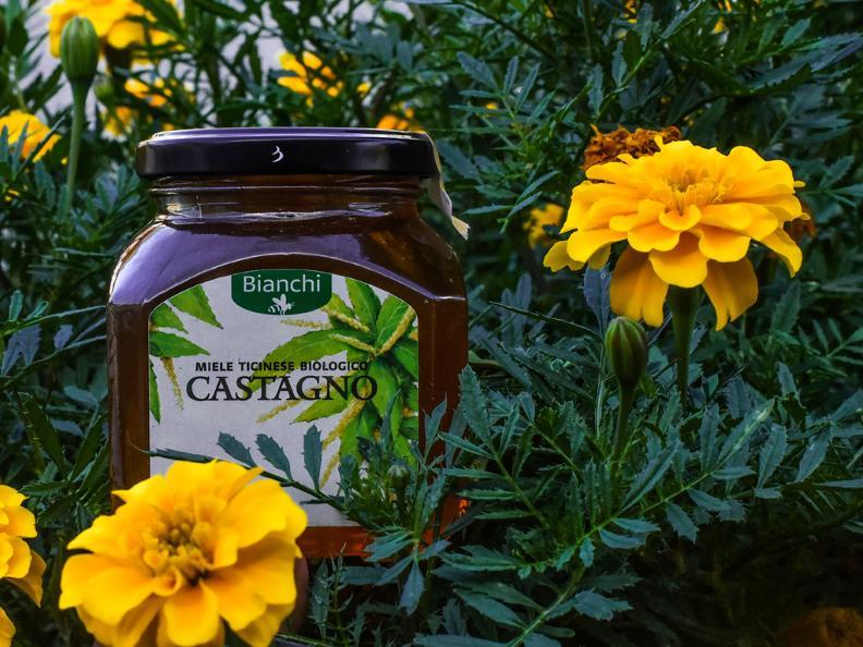 Image 1 - Visita e degustazione di miele all'apiario