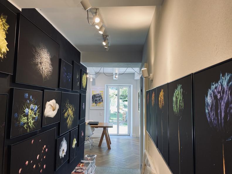 Image 2 - Casa Galleria Monte Generoso