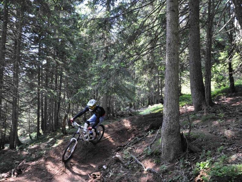 Image 3 - Nara Bikepark: The Black Wood Line