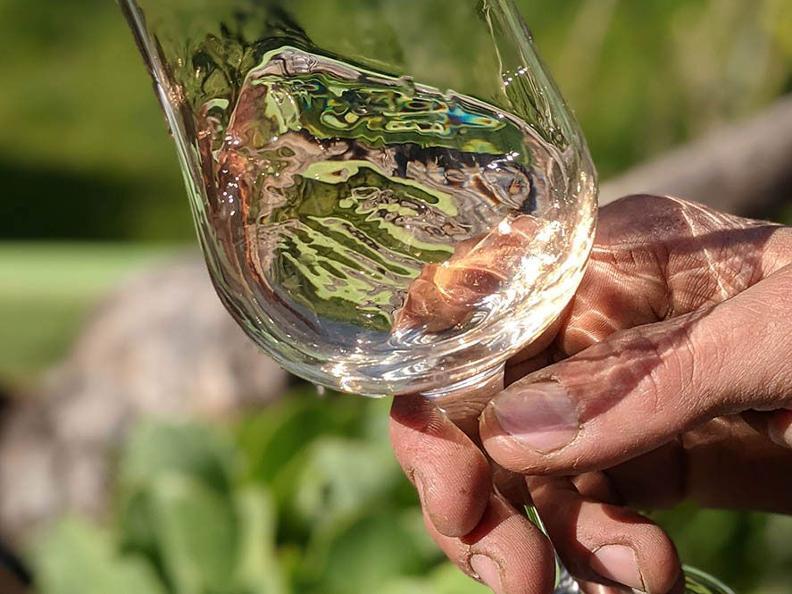 Image 1 - Degustazione di vini e prodotti locali in una cantina stile 1600