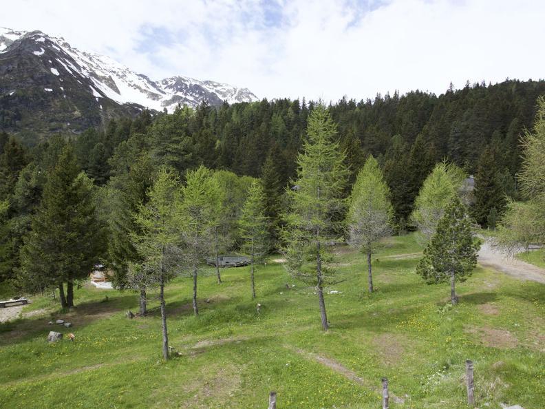 Image 14 - Centro Pro Natura Lucomagno