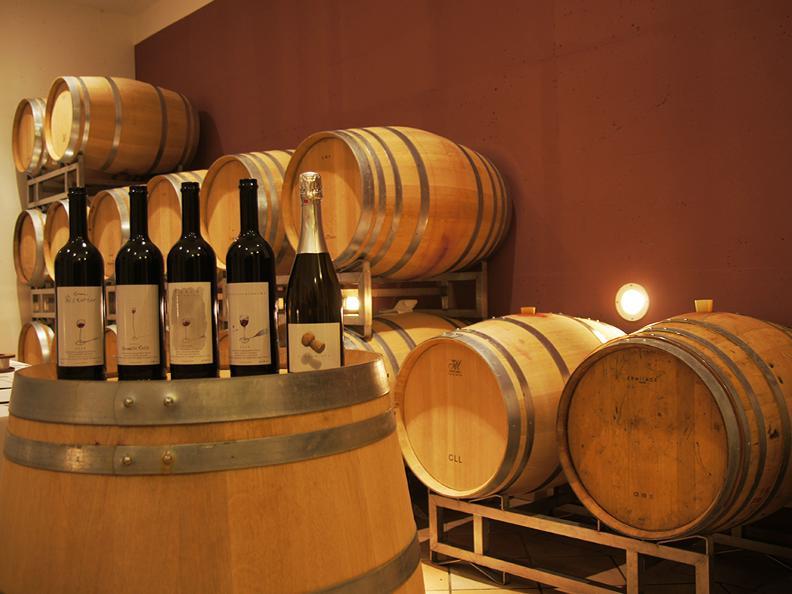Image 1 - Wine cellar Eric e Fabienne Klausener