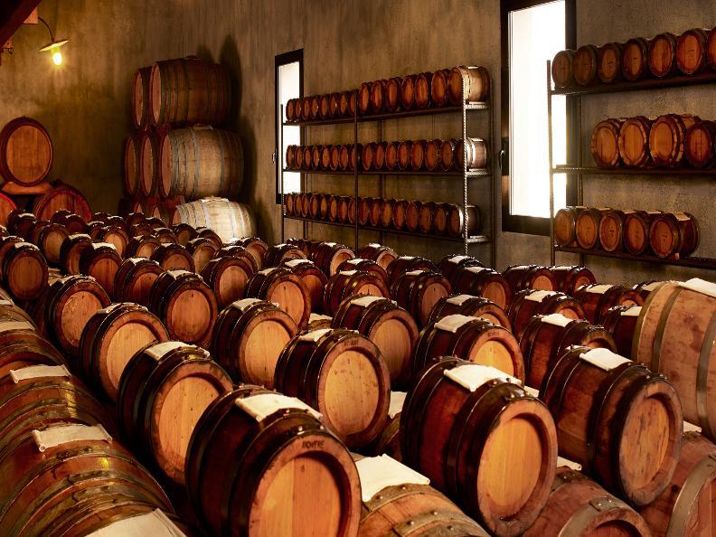 Image 2 - Vini & Distillati Angelo Delea SA