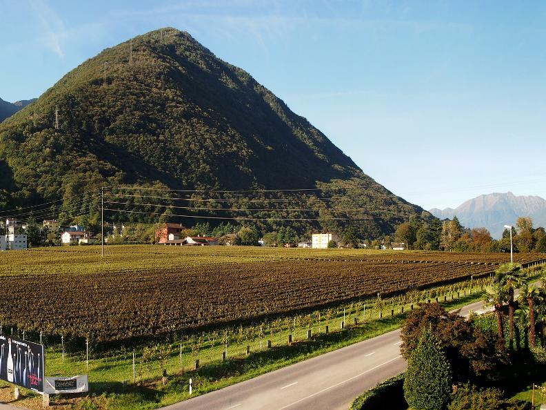 Image 5 - Vini & Distillati Angelo Delea SA