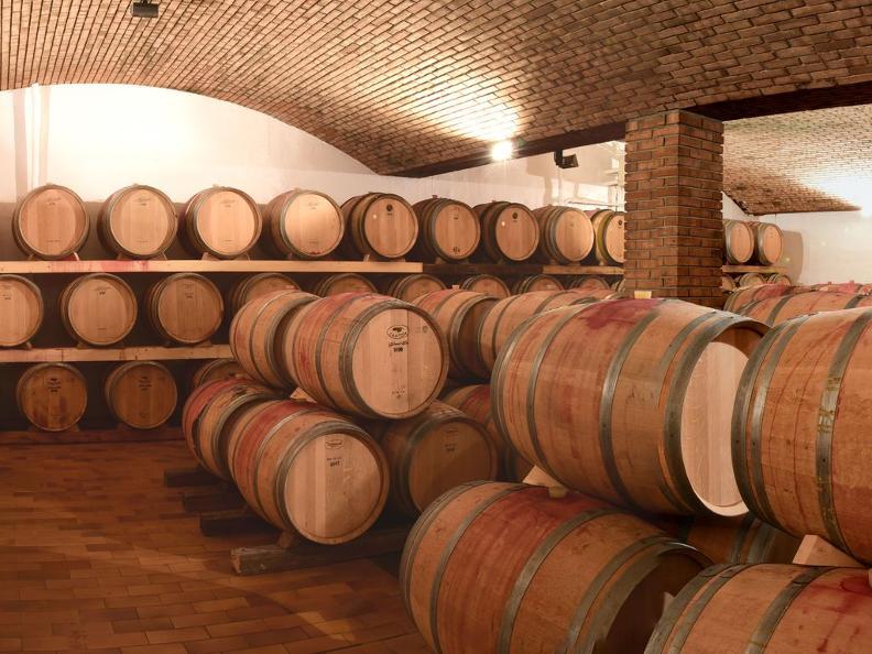 Image 5 - Cave vinicole Tamborini Carlo eredi SA