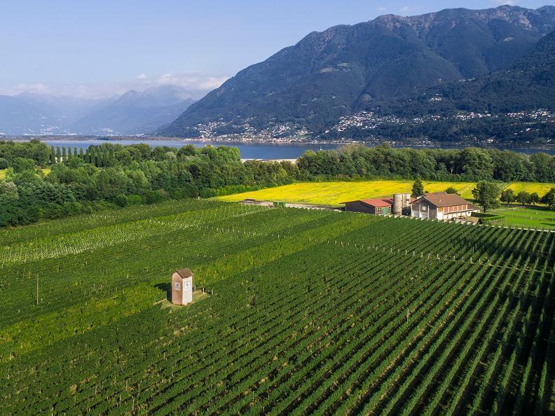 Image 0 - Terreni alla Maggia SA