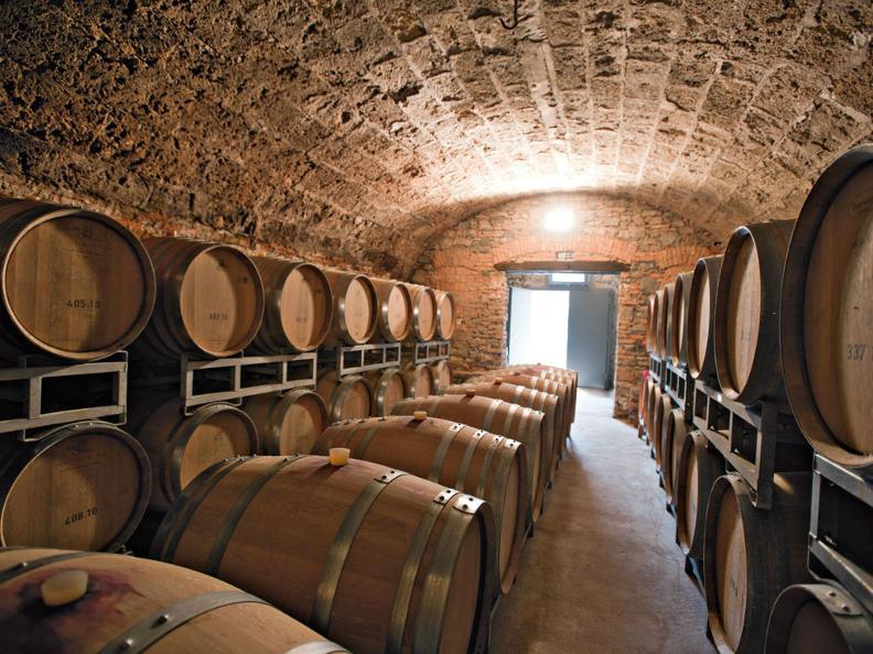 Image 1 - Merlot del Ticino ed altri vitigni