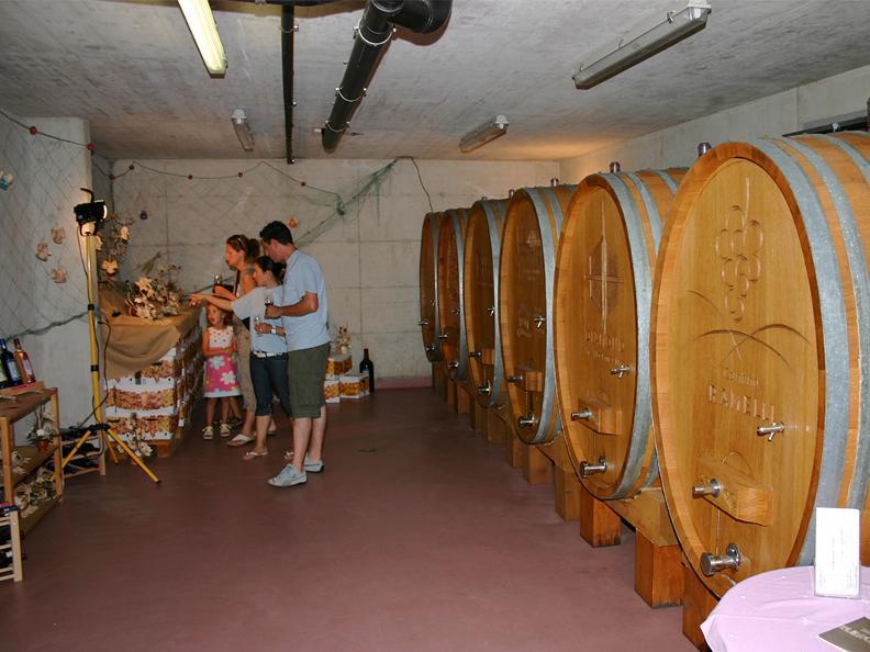Image 2 - Wine cellar Ramelli