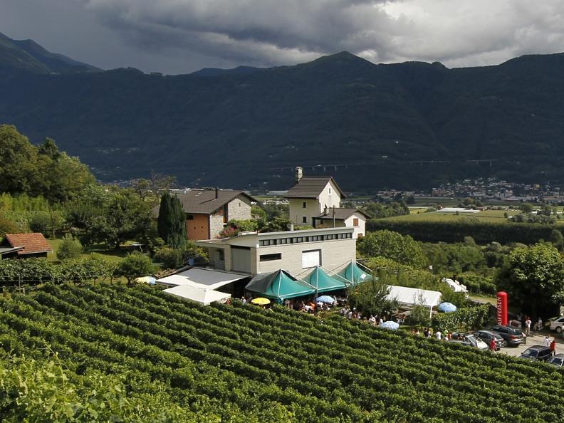 Image 0 - Wine cellar Ramelli