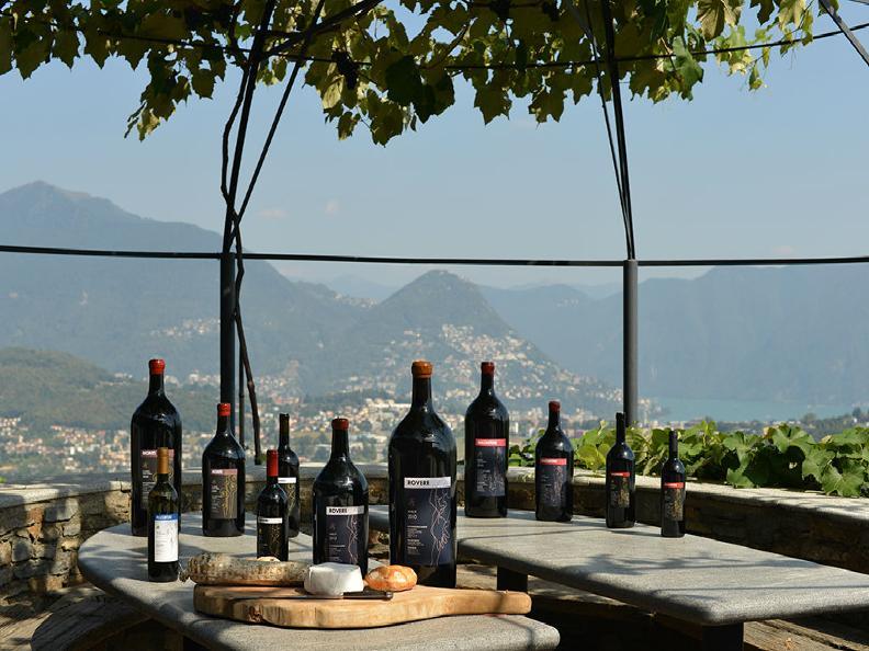Image 0 - Wine cellar Monti