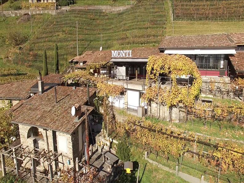 Image 7 - Wine cellar Monti