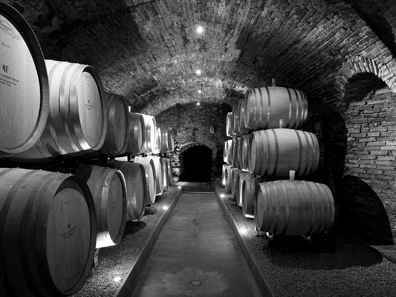Image 3 - Wine cellar Ferrari Roberto & Andrea