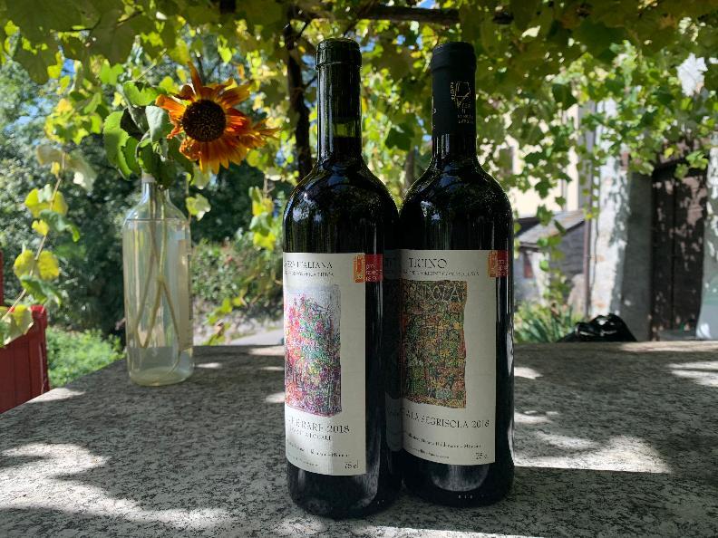 """Image 6 - Wine cellar """"La Segrisola"""""""