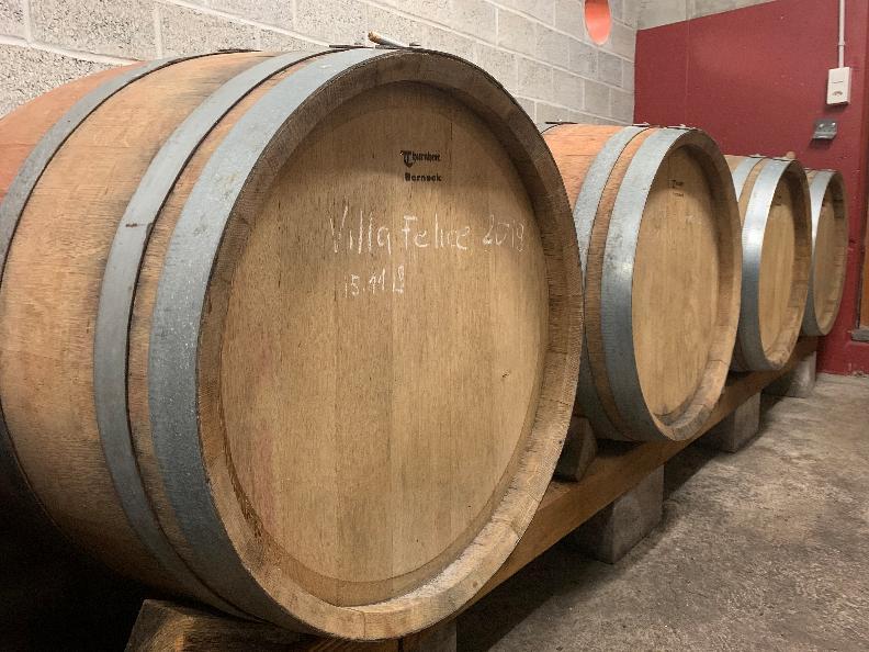 """Image 4 - Wine cellar """"La Segrisola"""""""