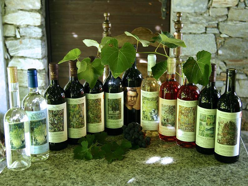 """Image 1 - Wine cellar """"La Segrisola"""""""