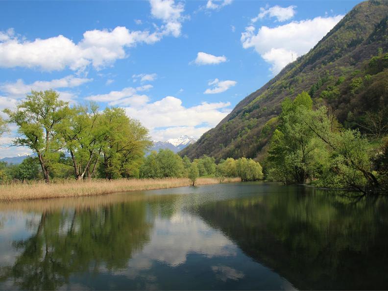 Image 2 - Naturschutzgebiet